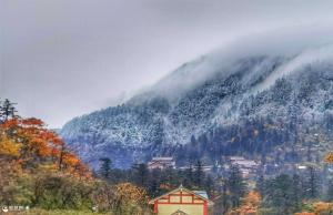 今天,峨眉山迎来2020年秋冬第一场雪!这也太美了吧~