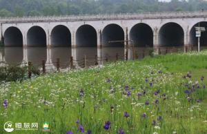 核心区面积150多亩,快去沐川这个湿地公园打卡!