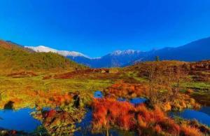 【乐山新晋网红打卡点】黑竹沟的秋天有一份灿烂的温柔